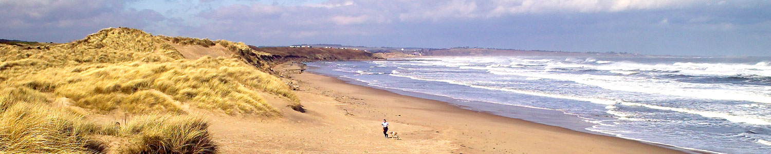 northumberland coast path official guidebook